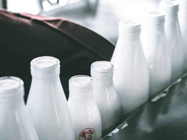 Eine Reihe Milchflaschen