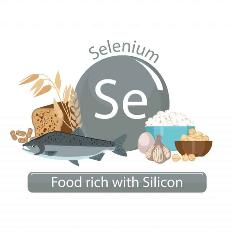 Schema mit Selen-haltigen Lebensmitteln