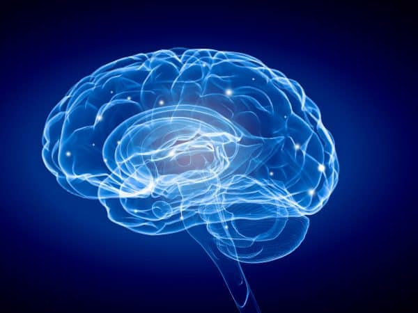43516486 – science image with human brain on blue background