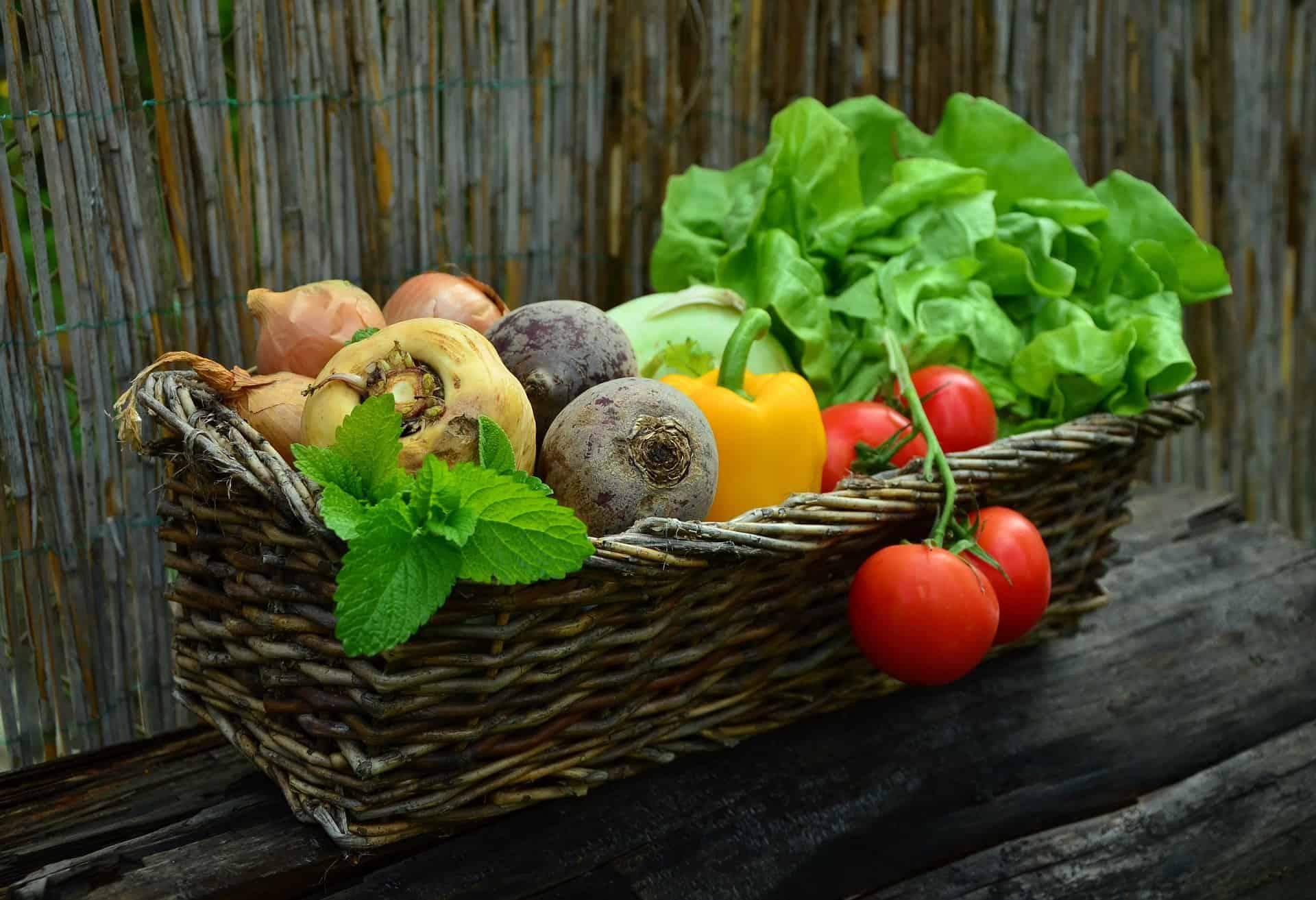 Antioxidantien in Lebensmitteln: Freien Radikalen den Kampf ansagen