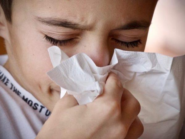 Das Immunsystem ist ein wichtiger Bestandteil unseres Körpers. Es schützt uns vor Viren, Bakterien und anderen Krankheitserregern. <br /></noscript>(Bildquelle: sweetlouise / unsplash)