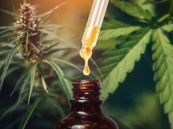 Concept medical marijuana. Cannabis CBD oil extracts in jars herb and leaves.