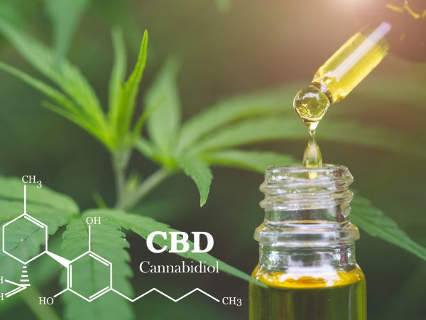 CBD  elements in Cannabis, Hemp oil, medical marijuana,  cannabinoids and health.
